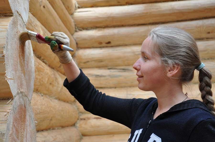 Обработка древесины – специфика применения антисептиков